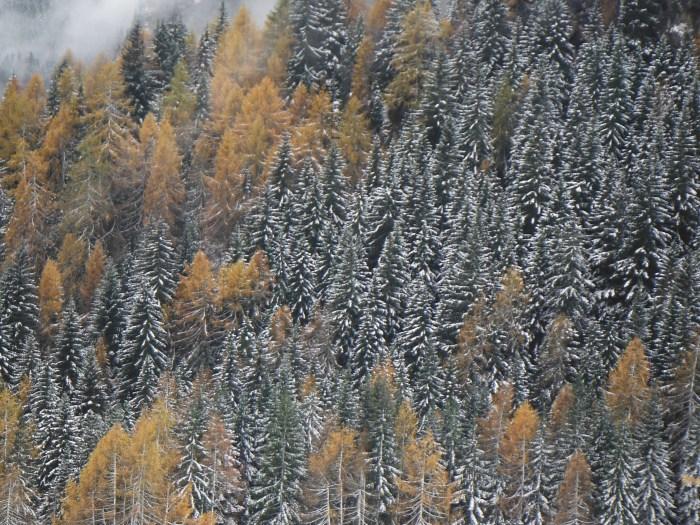 2 modi differenti di affrontare l'inverno