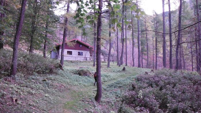 La radura del Rif. Monte Sernio
