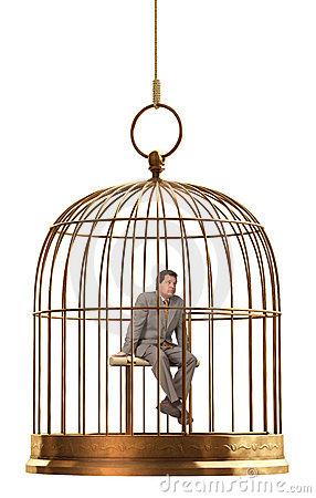 gabbia-di-uccello-5123444